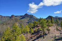 Gran Canaria landscape Royalty Free Stock Photos