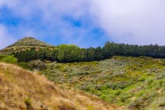Gran Canaria landscape on a sunny day. Dry grass in foreground royalty free stock photo