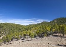 Gran Canaria, Las Cumbres - die höchsten Bereiche der Insel Stockbilder