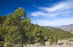 Gran Canaria, Las Cumbres - die höchsten Bereiche der Insel Stockfoto