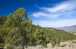 Gran Canaria, Las Cumbres - the highest areas of the island. Views from hiking path Llanos de la Pez - Tunte Stock Photo