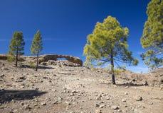 Gran Canaria, Las Cumbres - las áreas más altas de la isla Fotos de archivo libres de regalías