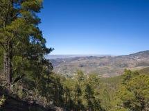 Gran Canaria, Lipiec, Tamadaba Obraz Stock