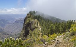 Gran Canaria, Mai Lizenzfreie Stockfotos