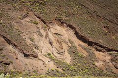 Gran Canaria, Mei stock fotografie
