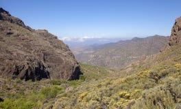 Gran Canaria, Mei stock foto's