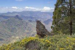 Gran Canaria, Mei stock foto