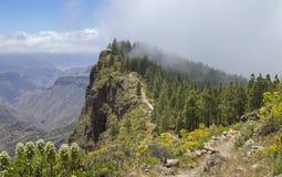 Gran Canaria, Mei royalty-vrije stock foto's