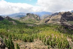 Gran Canaria mountain Stock Images