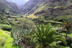 Gran Canaria mountains. Gran Canaria landscape, Spain. Los Berrazales canyon royalty free stock photo
