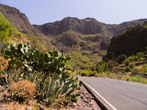 Gran Canaria Mountains. Road through the mountains of Gran Canaria stock image