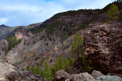 Gran Canaria Mountains Stock Photography