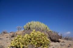 Gran Canaria, octubre imagen de archivo libre de regalías