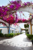 Gran canaria Puerto de Mogan白色房子 免版税图库摄影