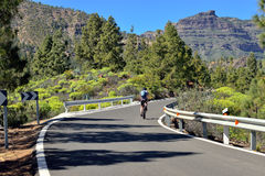 Gran Canaria road Stock Photos