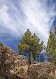 Gran Canaria, Rock formation at Risco Chapi Stock Images