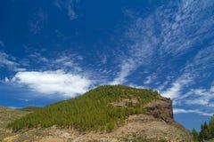 Gran Canaria, rutt Cruz de Tejeda - Artenara Royaltyfri Bild