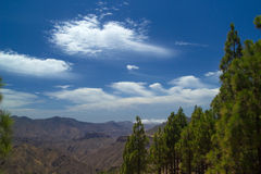 Gran Canaria, rutt Cruz de Tejeda - Artenara Arkivbilder