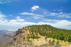 Gran Canaria, rutt Cruz de Tejeda - Artenara Arkivbild