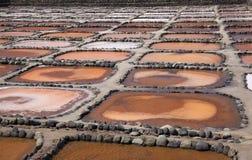 Gran Canaria, Salinas De Tenefe Zdjęcie Stock