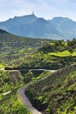 Gran Canaria scenery, Spain Stock Photography