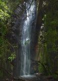 Gran Canaria, waterfall in the ravine Barranco de La Mina Stock Photos
