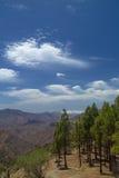 Gran Canaria, Weg Cruz de Tejeda - Artenara Lizenzfreie Stockfotografie