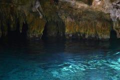 Gran Cenote dichtbij Tulum Mexico royalty-vrije stock afbeeldingen