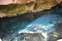 Gran Cenote dichtbij Tulum Mexico stock afbeelding