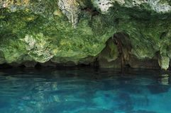 Gran Cenote in Yucatan, Mexiko lizenzfreie stockfotos