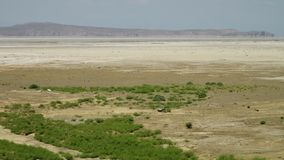 Gran desierto o rociada-e que riela Kavir de la sal metrajes