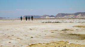 Gran desierto seco de la sal, rociada-e Kavir en Irán almacen de video