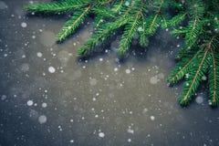 Gran för gran för jul för feriebanergräsplan naturlig på mörka Vinta Royaltyfria Bilder