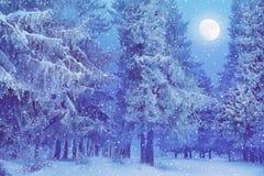 Gran för jullandskapfullmåne i snön som faller för att snöa ho royaltyfri bild