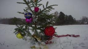 Gran för träd för nytt år för jul på fält i snöstorm stock video
