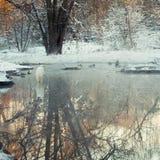 Gran garceta blanca que se coloca en un río de congelación fotografía de archivo