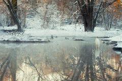 Gran garceta blanca que se coloca en un río de congelación fotos de archivo libres de regalías