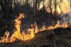 Gran incendio in aperta campagna immagini stock