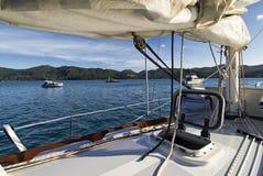 Gran isla de la barrera, Nueva Zelanda Fotos de archivo libres de regalías