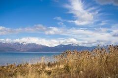 Gran lago Prespa. imagen de archivo