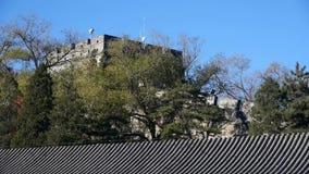 Gran Muralla en el pico de montaña, arquitectura antigua de China, fortaleza almacen de metraje de vídeo