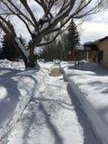 Gran nieve que traspala en vecindad residencial Imagen de archivo libre de regalías