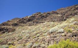 Gran occidental Canaria, mayo Fotografía de archivo