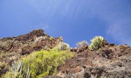 Gran occidental Canaria, mayo Foto de archivo libre de regalías