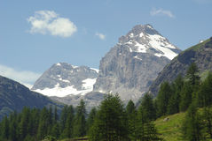 Gran Paradiso, Italy Stock Images