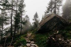 Gran Paradiso Mountain climbing stock image