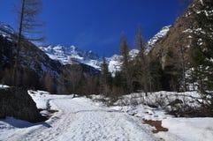 Gran Paradiso national park. Aosta Valley, Italy Royalty Free Stock Images