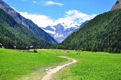 Gran Paradiso national park Royalty Free Stock Images