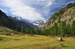 Gran Paradiso nationalpark. Aosta dal, Italien Royaltyfri Foto