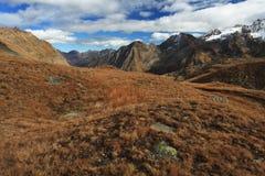 Gran Paradiso Włoski park narodowy Piękny krajobraz Zdjęcie Stock